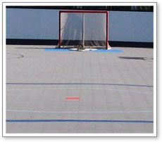 Inline Hockey Backyard